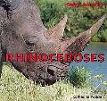 Rhinoceroses (Safari Animals)