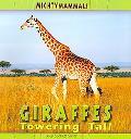Giraffes (Mighty Mammals)