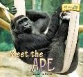 Meet the Ape (At the Zoo)