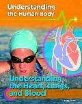 Understanding the Heart, Lungs, and Blood (Understanding the Human Body)
