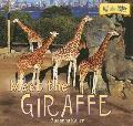 Meet the Giraffe (At the Zoo)
