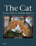 Cat : Clinical Medicine and Management