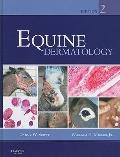 Equine Dermatology