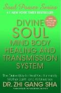 Divine Soul Mind Body Healing and Transmission Systems : The Divine Way to Heal You, Humanit...