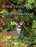 Black-Tailed Deer Of The Great Northwest