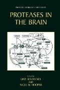 Proteases in the Brain