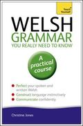 Welsh Grammar You Really Need to Know: A Teach Yourself Guide (Teach Yourself Language)
