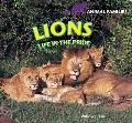 Lions: Life in the Pride (Animal Families)