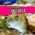 Your Neighbor the Mouse (City Critters)