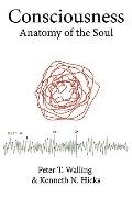 Consciousness: Anatomy of the Soul
