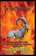 The Twin Horns of Jireh: The Dynamics of Power Praise and Worship Authority (Volume 1)