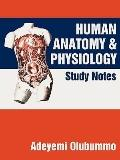 Human Anatomy and Physiology : Study Notes
