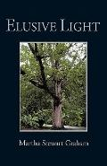 Elusive Light : A Collection of Poetry and Short Stories
