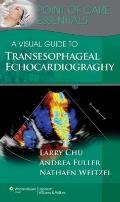 Visual Guide to Transesophageal Echocardiography : Point of Care Essentials