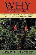 Why You Were Born: The chronological story of your existence from the beginning of creation ...