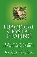 Practical Crystal Healing : 555 Tips and Techniques for Animal Companions