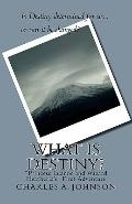 What Is Destiny? : Princess Luanne and Wizard Heatheria's First Adventure