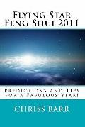 Flying Star Feng Shui 2011: Predictions and Tips for a Fabulous Year!