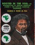Rooted in the Soul: An Introduction to African American Studies AND the African American Exp...