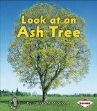 Look at an Ash Tree (First Step Nonfiction: Look at Trees)