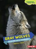 Gray Wolves : Howling Pack Mammals