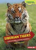 Siberian Tigers : Camouflaged Hunting Mammals