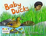 Baby Ducks (Engage Literacy: Engage Literacy Red)