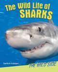 Wild Life of Sharks