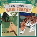 Day and Night in the Rain Forest