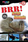 BRR! Arctic Animals : Level 1