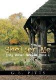Shelter Me: Indy Women Series, Book 1