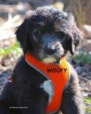 Woofy: The Life of a Woof (Volume 1)