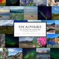 The Alphabet: In Scenes of Nature