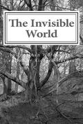 Invisible World : Lectures on British Romantic Poetry and the Romantic Imagination