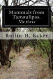 Mammals from Tamaulipas, Mexico