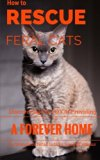 How To Rescue Feral Cats: Discovering the Joy of Providing a Forever Home to Homeless Feral ...