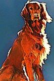 Irish Setter: Dog Lover's Journal/Notebook/Diary (Volume 8)