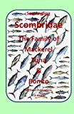 Sea Angling Scombridae The Family of Mackerel, Tuna & Bonito (Target Species)