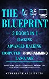 Computer Programming Languages & Hacking & Advanced Hacking: 3 Books in 1: THE BLUEPRINT: Ev...