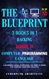 Raspberry Pi & Hacking & Computer Programming Languages: 3 Books in 1: THE BLUEPRINT: Everyt...