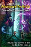 Adventures of Poe the Cat: Miniature Boy, Wizards and Witches (Volume 2)