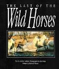 The Last of the Wild Horses - Martin Harbury - Paperback - REISSUE