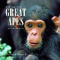 Nature of Great Apes Our Next of Kin