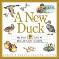 New Duck My First Look at the Life Cycle of a Bird