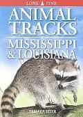Animal Tracks of Mississippi & Louisiana