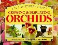 Growing and Displaying Orchids: A Step-by-Step Guide - Wilma Rittershausen - Paperback
