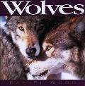 Wolves - Daniel Wood - Hardcover