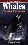Whales, Dolphins, & Porpoises: An Altitude SuperGuide (Altitude Superguides)