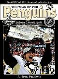 Year of the Penguins: Celebrating Pittsburgh's 2008-09 Stanley Cup Championship Season