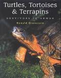 Turtles, Tortoises and Terrapins Survivors in Armor